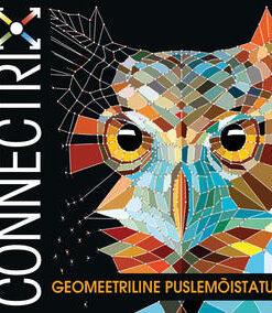 connectrix-geomeetriline-puslemõistatus
