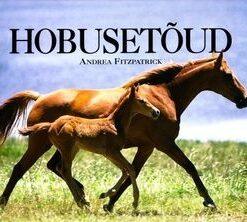 hobusetõud